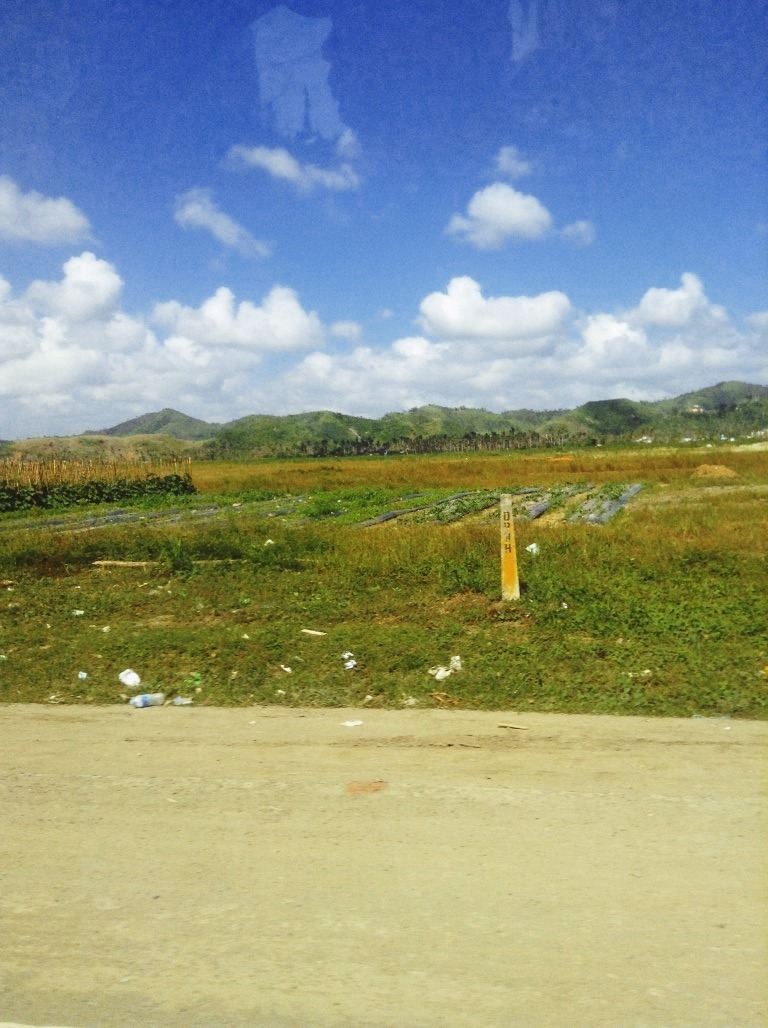 garden plots in palo leyte after typhoon yolanda