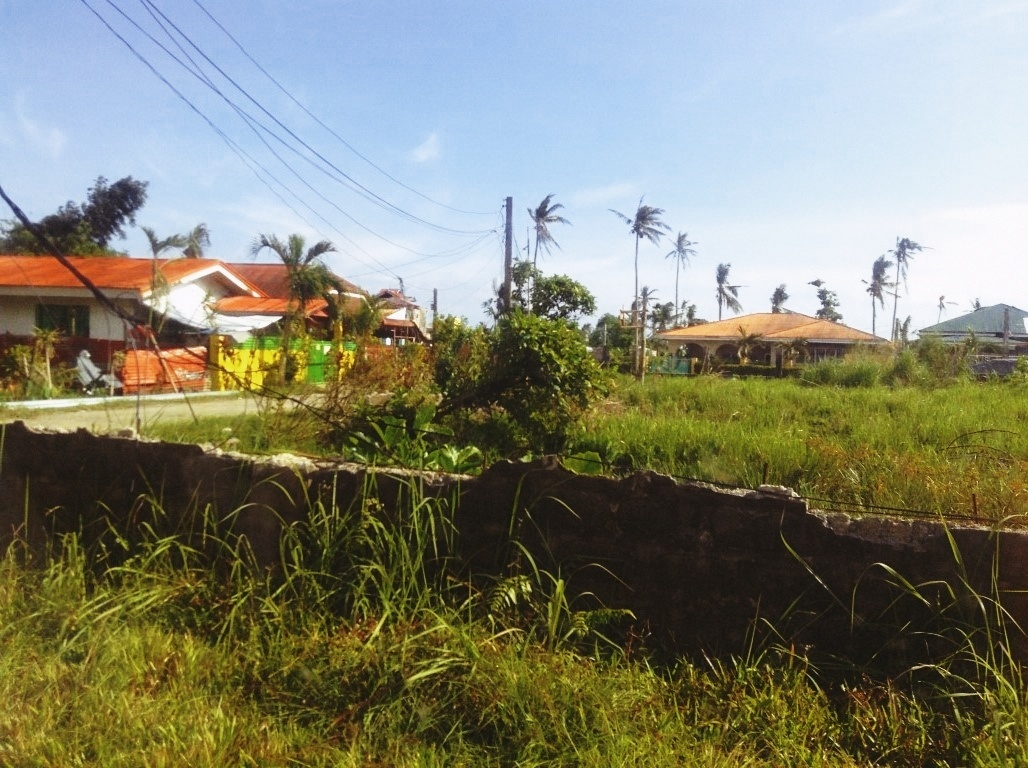 Zara Compound VandG Subdivision in Tacloban City after typhoon yolanda