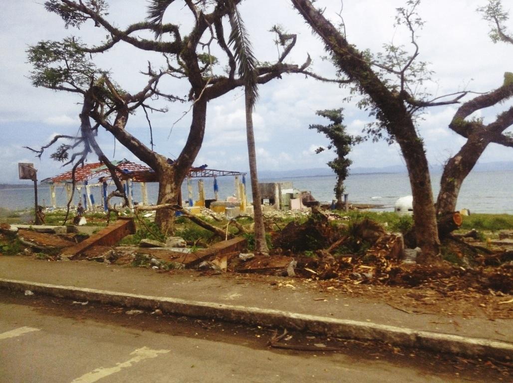 lions den in tacloban city yolanda damage