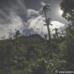 Mount Danglay of Samar