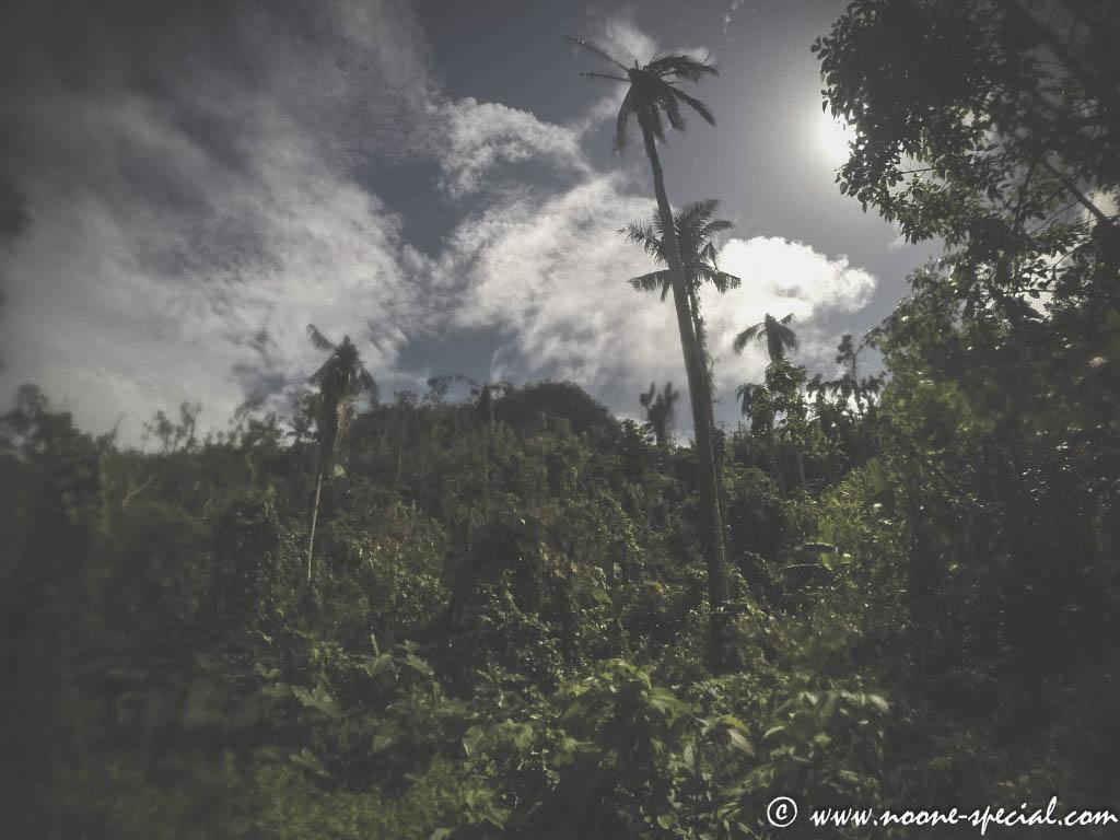 Mount Danglay in Samar